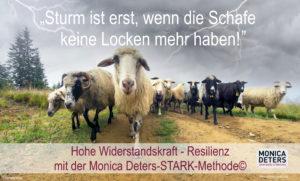 xshutterstock_367659839